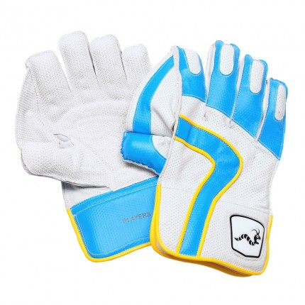 Woodworm Cricket IB Players Leather Keeping Gloves
