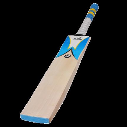Woodworm Cricket IB 625 Cricket Bat Main