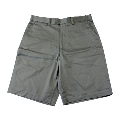 Ashworth Mens Plain Shorts