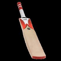 Woodworm Cricket Fireworm Attack Junior Bat
