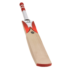 Woodworm Cricket Fireworm Attack Junior Bat