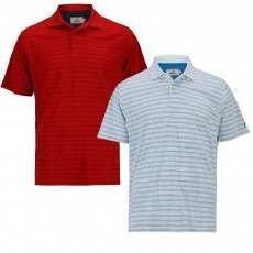 Woodworm Tour Stripe Polos - 2 Pack
