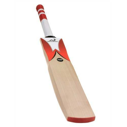Woodworm Cricket Fireworm Attack Bat