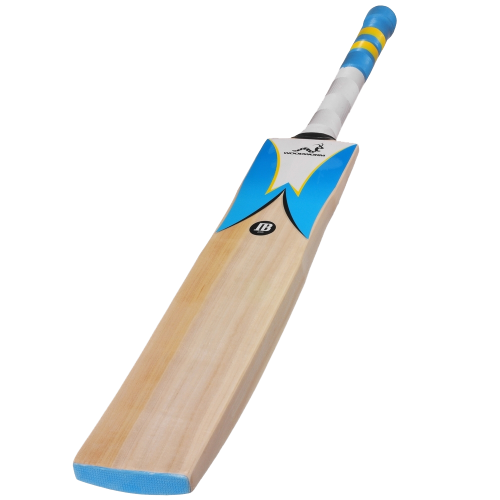 Woodworm Cricket IB 235 Cricket Bat Main